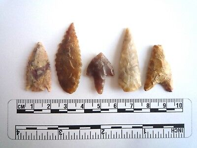 Neolithic Arrowheads x 5, High Quality Selection of Styles - 4000BC - (2410)