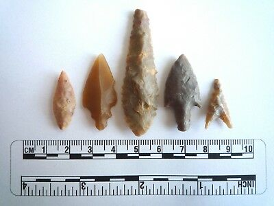 Neolithic Arrowheads x 5, High Quality Selection of Styles - 4000BC - (2403)