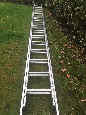 used double ladders
