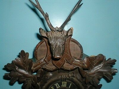 Giant Stags Head Antique Cuckoo Clock Great Xmas Gift For Clock Enthusiast !