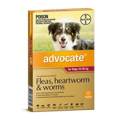 Advocate Dog Large Red 10-25KG