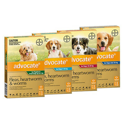 Advocate For Dogs 3 Pack Very Small | Small | Medium | Large