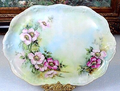 """Coiffe Limoges Antique Wild Pink Roses 12"""" Hand Painted Signed Platter Tray"""