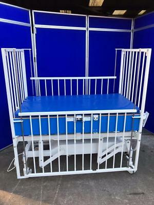 ArjoHuntleigh Healthcare Childminder Special Needs Cot Model - 31000E/L