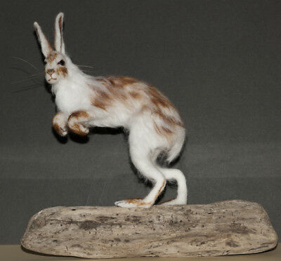 Hare, Snow Hare, Lievre - Needle Felted Animal Sculpture, OOAK