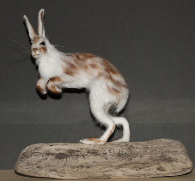 Snow Hare, Lievre - Needle Felted Animal Sculpture, OOAK- now sold, example only
