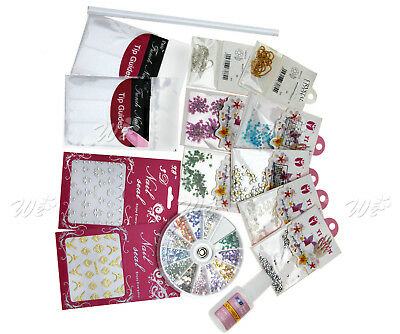 Pro Nail Art Decoration Kit Dry Flowers French Tips LB