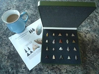20 x Quality Miniature Neolithic Arrowheads in Display Case - 4000BC - (W032)