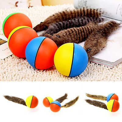 Lovely Pet Dog Cat Weasel Motorized Rolling Ball Appears Jump Moving Alive Toy^