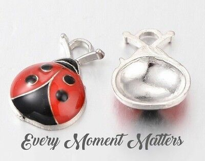 10 x delicate leaf /& ladybird charms pendants silver 24mm A220 UK SELLER