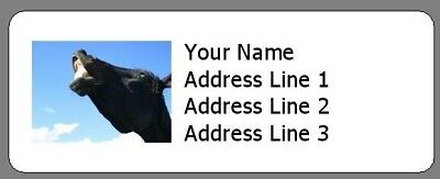 Laughing Horse - 30 Personalized Photo Return Address Labels