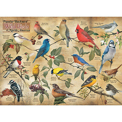 Popular Backyard Wild Birds of North America 1000 Piece Jigsaw Puzzle