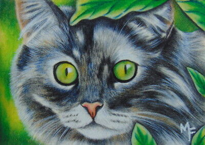 ACEO Original Miniature Painting Cat Face Nature Colored Pencil Art by M. Frost