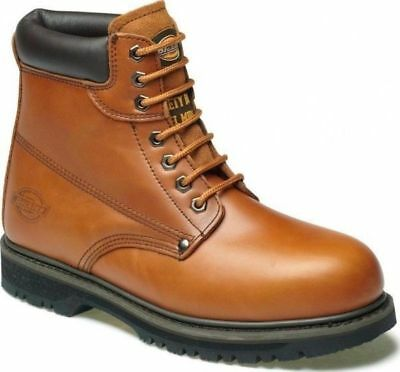78ccac141ae NEW MENS DICKIES Cleveland Midsole Steel Toe Cap Work Ankle Safety ...