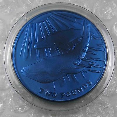 South Georgia and the South Sandwich Islands £2 Pounds 2013 Blue Whale  [5062