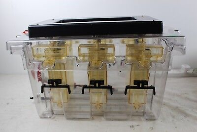 Bio-Rad Multi-Cell Multi-Gel Electrophoresis Protean II Casing Chamber 1651951