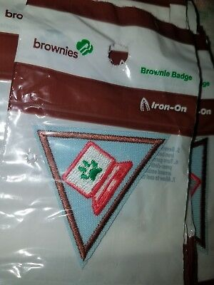 Girls Scout Brownies Badges, Painting and Cyber Security