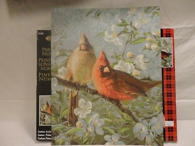 Finished Paint by Numbers Cardinals Male and Female Spring Blossoms 16x20