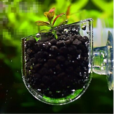 5Pcs Pinhole Glass Pot Plant Cup Holder Shrimp Aquarium Fish Tank Aquatic Feeder