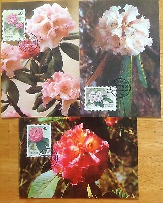 China 1991 Rhododendron Maxicards x 3