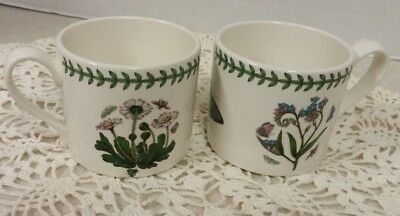 Lot Of 2 Portmeirion Botanic Garden Coffee Cups