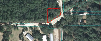 Umatilla Florida Land - Lot near Ocala National Forest - Marion County Property