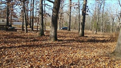 Beautiful Residential Lot in Diamond City AR