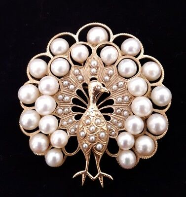 Broche or et perle paon