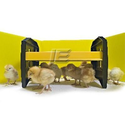 New Brinsea Chick Brooder - Eco Glow 20 - Electric Hen for upto 20 Chicks