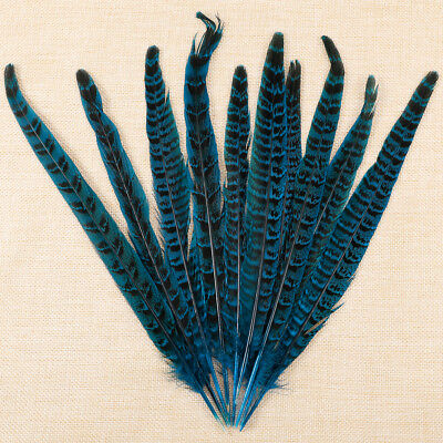 10 Pack Lake Blue Pheasant Tail Feathers 10-12 Inch Long DIY Craft Home Décor