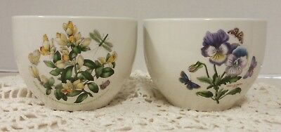 Lot Of 2 Portmeirion Botanic Garden Bowls