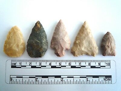 5 x Native American Arrowheads found in Texas, dating from approx 1000BC  (2207)