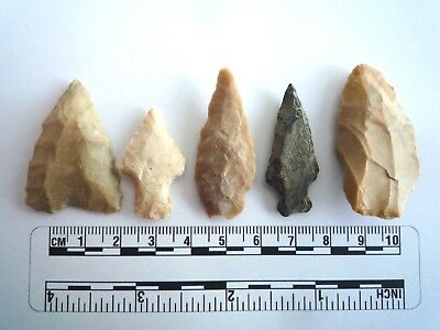 5 x Native American Arrowheads found in Texas, dating from approx 1000BC  (2209)