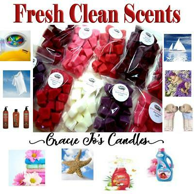 FRESH CLEAN SCENTS 40 pc Wax Tart Melts 8 oz Mini Chunks Chips Crumbles Home