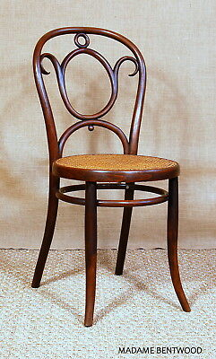 Chaise bistrot TÜRPE Dresden vers 1900 collector no thonet