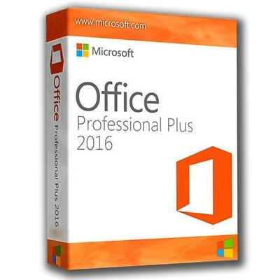 office professional plus 2019 vs home and business