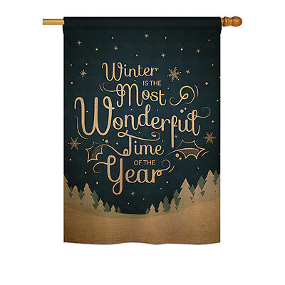Winter is Most Wonderful Time - Impressions Decorative House Flag - H191086-P3