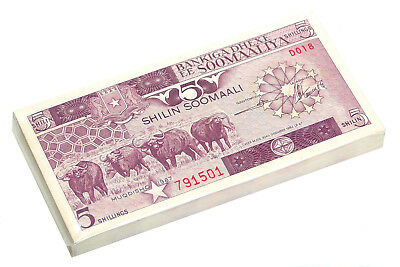 Somalia 5 Shillings 1986 P 31 Unc Bundle Of (100 Notes)