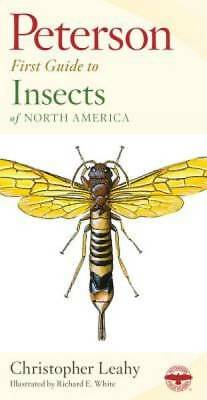 Peterson First Guide to Insects of North America by Leahy, Christopher
