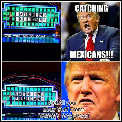 "Fridge Fun Refrigerator Magnet DONALD TRUMP Wheel of Fortune ""Mexicans"" Meme"