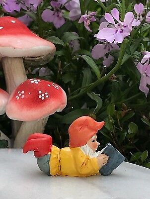 Miniature Dollhouse FAIRY GARDEN ~ Mini GNOMELAND Gnome Figurine Reading a Book