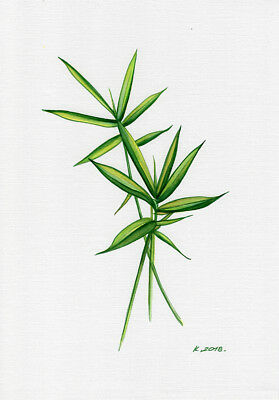 Bamboo, plants, herbs, Watercolor Original Painting Art, Quick sketch
