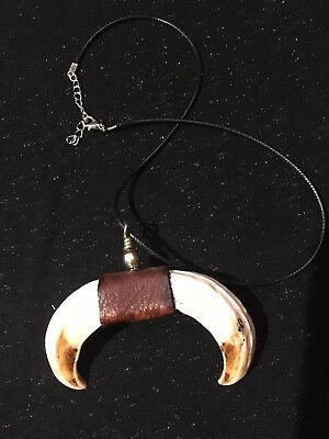 REAL wild boar upper set tusk tooth teeth necklace