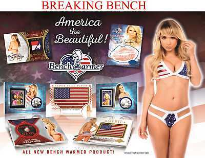 HEATHER RAE YOUNG 2017 Benchwarmer AMERICA 8-BOX CASE BREAK #M914