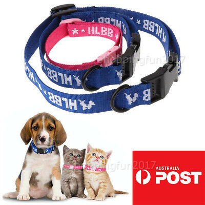 4 In 1 Pet Adjustable Collar Cats Dogs Puppy Anti Flea Safety Outdoor Neck Strap