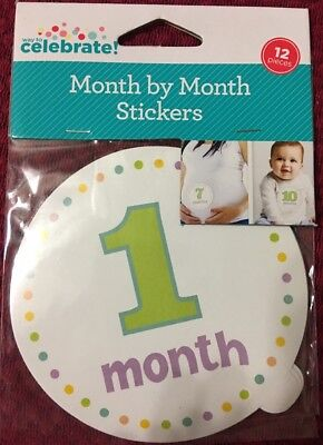 Baby's 1st Year! 12 Month Milestone Sticker Month By Month Baby Belly Stickers!