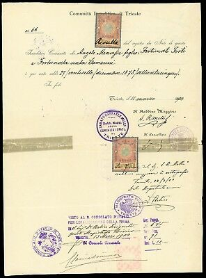Judaica - 1900 birth certificate issued by the Jewish Community in Trieste