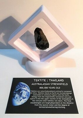 """RARE"" 10.0 Gram TEKTITE Museum Quality with stand and label, asteroid, Comet"