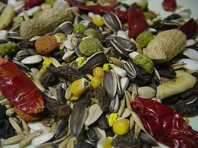 Tropical Parrot Food Fruit Mix, Macaw, African Grey, Bird  FREE & FAST Post