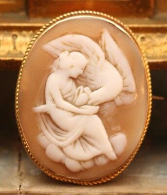 An Exquisite Antique Shell Carved Cameo Brooch, Leda & the Swan, 9ct Gold Mount